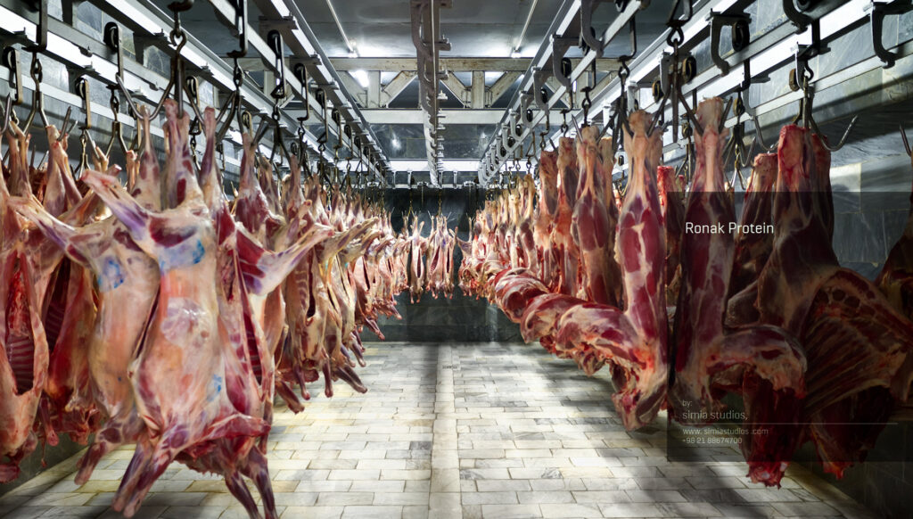 عکاسی صنعتی صنایع بسته بندی گوشت روناک پروتئین